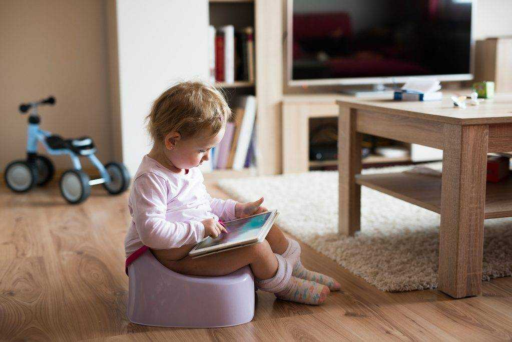 How do you potty train a child with developmental delays?